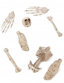 Paquete de 8 huesos decorativos
