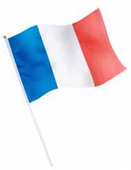 Bandera de aficionado francés