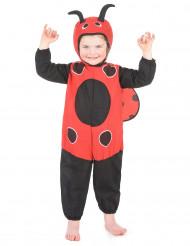 Disfraz de mariquita para niño o niña