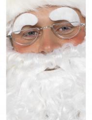 Gafas de Papá Noel para adulto metal