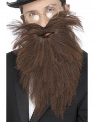 Barba larga morena para hombre