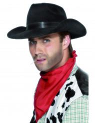 Sombrero negro de vaquero