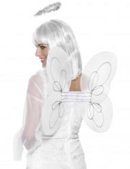 Alas blancas de ángel