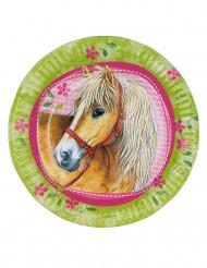 8 platos con caballos