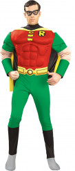 Disfraz de Robin™ para hombre