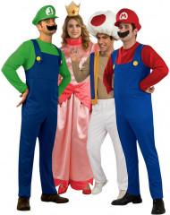 Disfraces de la banda de Mario™
