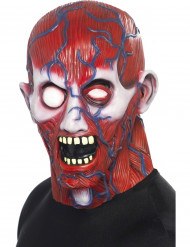 Máscara integral de cuerpo humano