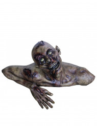 Decoración busto zombie Halloween