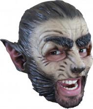 Máscara de lobo adulto Halloween