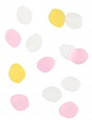 Confetis de pétalos de flores