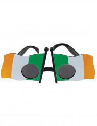 Gafas de la bandera de Irlanda