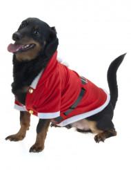 Abrigo de Navidad para perro