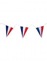 Guirnalda bandera francesa