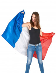 Capa hincha Francia