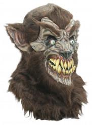 Mácara de lobo terrorífico adulto Halloween