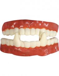 Dentadura postiza de caucho