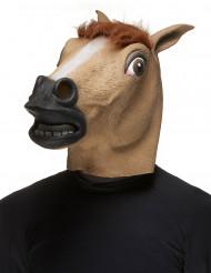 Máscara caballo adulto