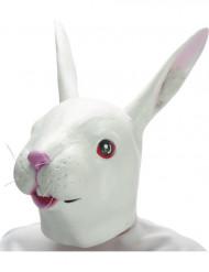 Máscara conejo látex adulto
