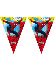 Guirnalda Spiderman™