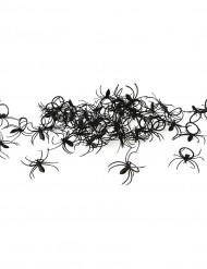 Lote 50 anillos araña Halloween