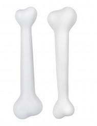 Kit de 2 huesos prehistóricos