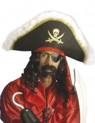 Barba pirata adulto