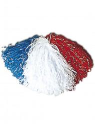 Pompón hincha Francia