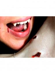 Heridas mordisco vampiro aplicación con agua