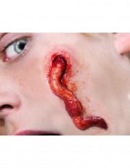 Heridas gusanos aplicación con agua