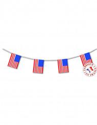 Guirnalda banderines USA 4 metros