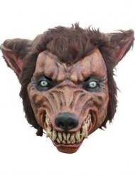 Máscara 3/4 hombre lobo