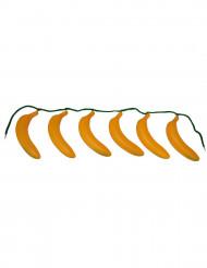 Cinturón plátano adulto