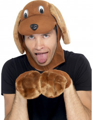 Kit perro adulto