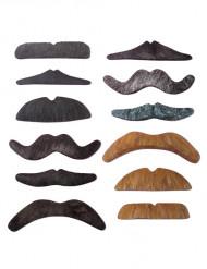 Lote de 12 bigotes