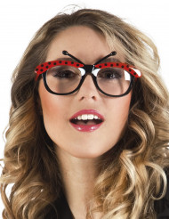 Gafas mariquita adulto