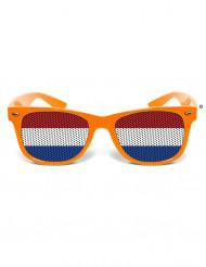 Gafas humorísticas Países Bajos