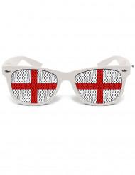 Gafas humorísticas Inglaterra