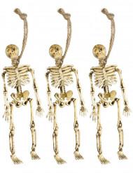 Decoración esqueletos colgantes Halloween