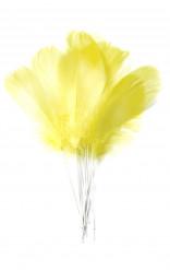 12 Plumas amarillas sobre palillos