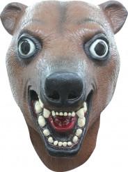 Máscara oso marrón