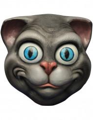 Máscara de gato divertido