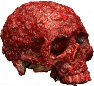 Cráneo ensangrentado