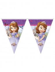 Guinalda Banderines Princesa Sofía™