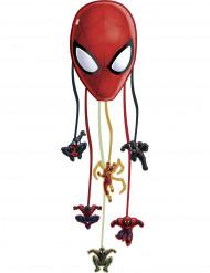 Piñata Spiderman Web Warriors™
