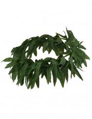 Corona hojas tropicales