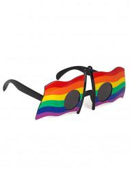 Gafas banderas multicolor