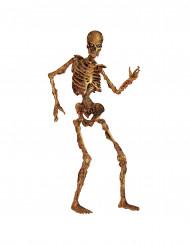 Decoración esqueleto articulado descomposición Halloween