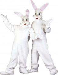 Disfraz conejo mascota adulto