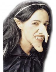 Kit bruja adulto Halloween
