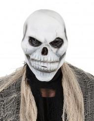 Máscara cráneo esqueleto adulto Halloween